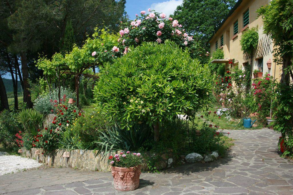 Toskana Urlaub Ferienwohnungen Terrasse