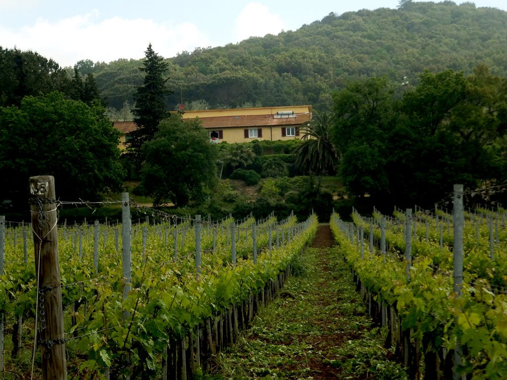 Toskana Urlaub Ferienwohnungen Anwesen